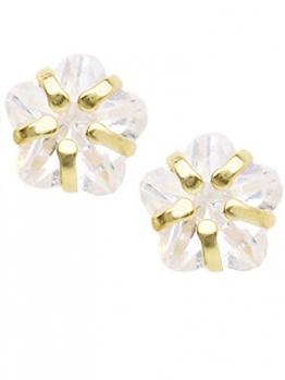 Ohrringe Ohrstecker Stecker Gelbgold 333 Gold (8 Karat) Mit Zirkonia Weiß Ø 5mm Goldstecker Little Paradise O-03332-G301-CZC-whi - 1